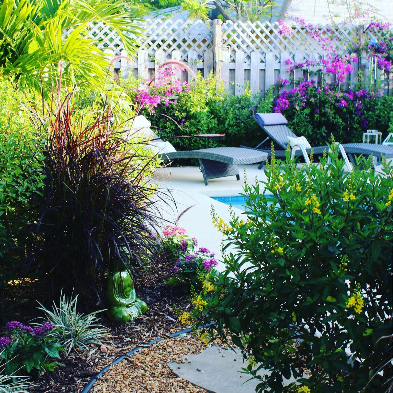 renovate backyard
